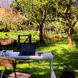 adelina horn outdoor office
